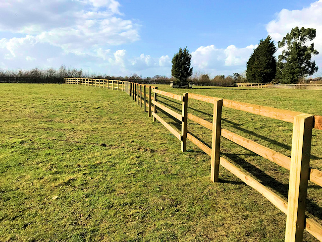 Paddock, Equestrian, Commercial Ground Care and Garden Services company in Colchester and Essex